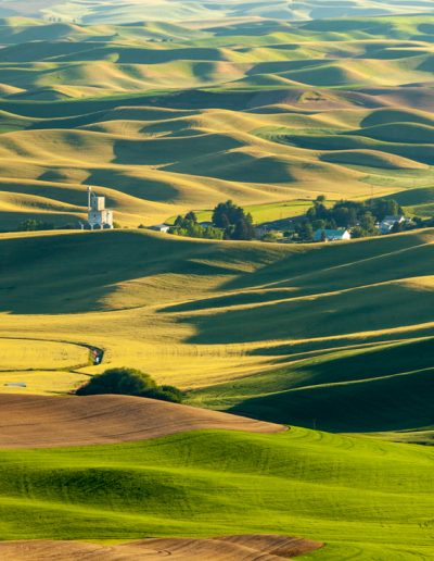 Farm Country Of The Palouse