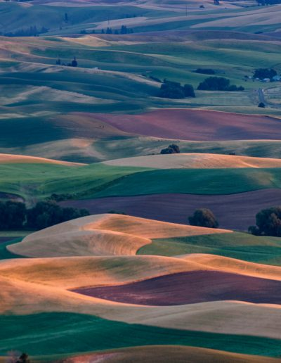 jack arnold palouse sunset