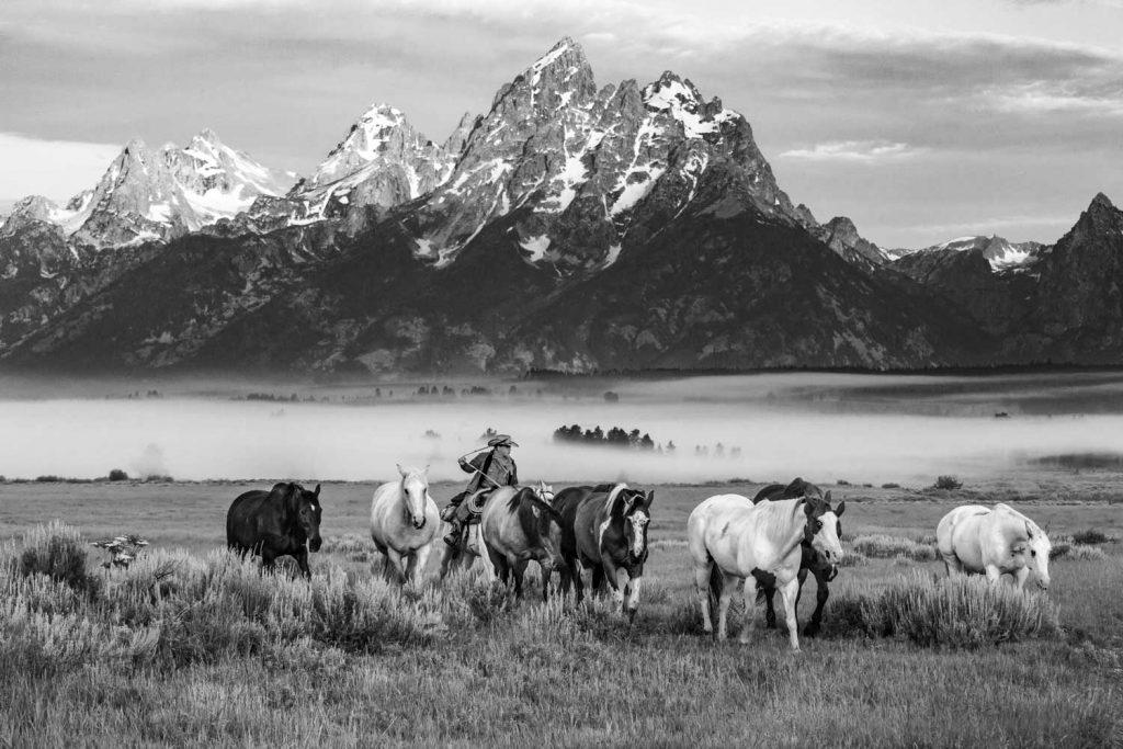 Morning Roundup--Jack Arnold Photography